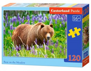 BEAR ON THE MEADOW